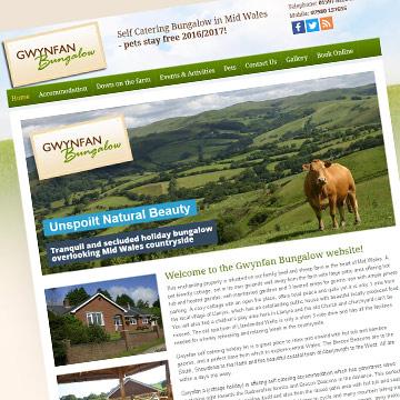 Gwynfan tourism website